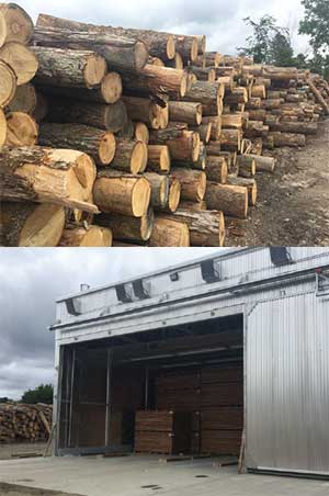 lumber mill case study