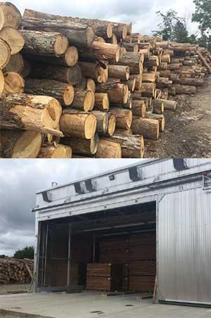 lumber mill case study